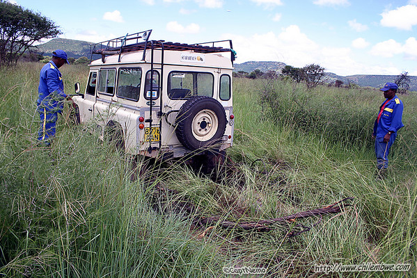 Temporarily stuck landrover- the ground here was very wet.