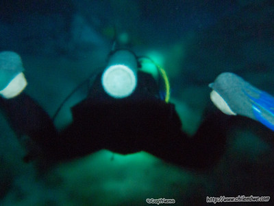 entering the halocline